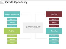 Growth Opportunity Ppt Powerpoint Presentation Infographic Template Gridlines Cpb