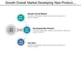 Growth Overall Market Developing New Product Establishing Strategy