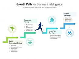 Growth Path For Business Intelligence