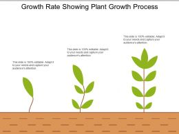 Growth Rate Showing Plant Growth Process