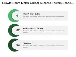 Growth Share Matrix Critical Success Factors Scope Activities