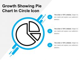 Growth Showing Pie Chart In Circle Icon
