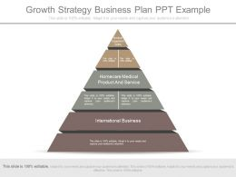 Growth Strategy Business Plan Ppt Example