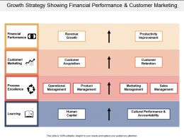 Growth Strategy Showing Financial Performance And Customer Marketing