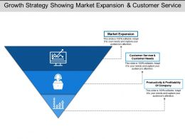 Growth Strategy Showing Market Expansion And Customer Service
