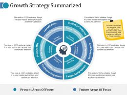 Growth Strategy Summarized Ppt File Show