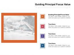 Guiding Principal Focus Value Ppt Powerpoint Presentation Show Outline Cpb