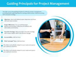 Guiding Principals For Project Management