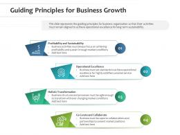 Guiding Principles For Business Growth