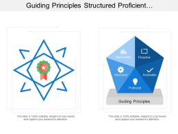 Guiding Principles Structured Proficient Proactive Measurable Stability
