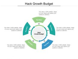 Hack Growth Budget Ppt Powerpoint Presentation Infographics Rules Cpb