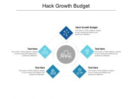 Hack Growth Budget Ppt Powerpoint Presentation Professional Backgrounds Cpb