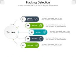 Hacking Detection Ppt Powerpoint Presentation Professional Guide Cpb