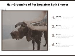 Hair Grooming Of Pet Dog After Bath Shower