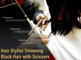 Hair Stylist Trimming Black Hair With Scissors