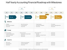 Half Yearly Accounting Financial Roadmap With Milestones