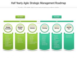 Half Yearly Agile Strategic Management Roadmap