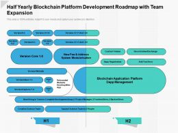 Half Yearly Blockchain Platform Development Roadmap With Team Expansion