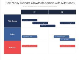 Half Yearly Business Growth Roadmap With Milestones