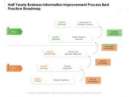 Half Yearly Business Information Improvement Process Best Practice Roadmap