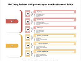 Half Yearly Business Intelligence Analyst Career Roadmap With Salary