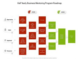 Half Yearly Business Mentoring Program Roadmap