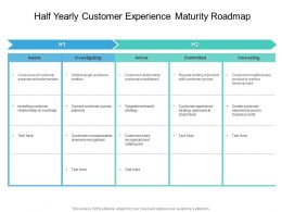 Half Yearly Customer Experience Maturity Roadmap