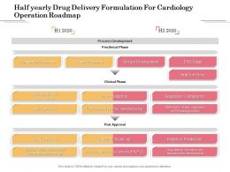 Half Yearly Drug Delivery Formulation For Cardiology Operation Roadmap