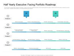 Half Yearly Executive Facing Portfolio Roadmap Timeline Powerpoint Template