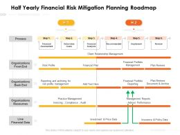 Half Yearly Financial Risk Mitigation Planning Roadmap
