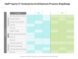 Half Yearly IT Enterprise Architecture Process Roadmap