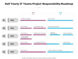 Half Yearly It Teams Project Responsibility Roadmap