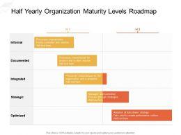 Half Yearly Organization Maturity Levels Roadmap