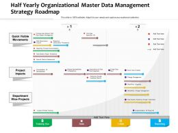 Half Yearly Organizational Master Data Management Strategy Roadmap