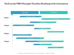 Half Yearly PMO Example Timeline Roadmap With Assessment