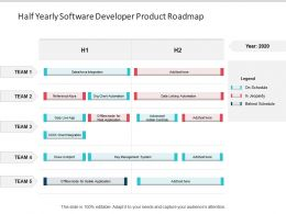 Half Yearly Software Developer Product Roadmap