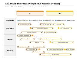 Half Yearly Software Development Swimlane Roadmap