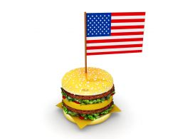 hamburger_with_flag_of_america_stock_photo_Slide01