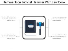 Hammer Icon Judicial Hammer With Law Book