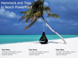 Hammock And Tree In Beach Powerpoint