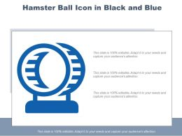 Hamster Ball Icon In Black And Blue