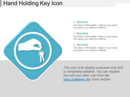 Hand Holding Key Icon