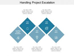 Handling Project Escalation Ppt Powerpoint Presentation Professional Master Slide Cpb