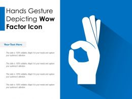 Hands Gesture Depicting Wow Factor Icon
