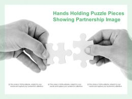 Hands Holding Puzzle Pieces Showing Partnership Image
