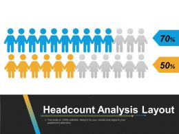 Headcount Analysis Layout