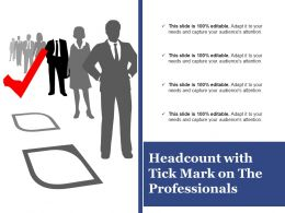 headcount_with_tick_mark_on_the_professionals_Slide01