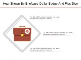 Heal Shown By Briefcase Dollar Badge And Plus Sign