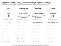 Health And Fitness Industry Digital Marketing Strategy Email Marketing Budget And Package Ppt Themes