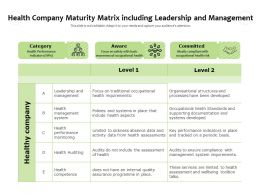 Health Company Maturity Matrix Including Leadership And Management